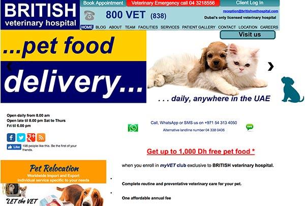 Prvi primer dizajna spletne strani